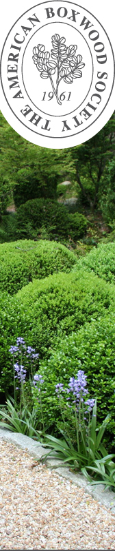 The American Boxwood Society